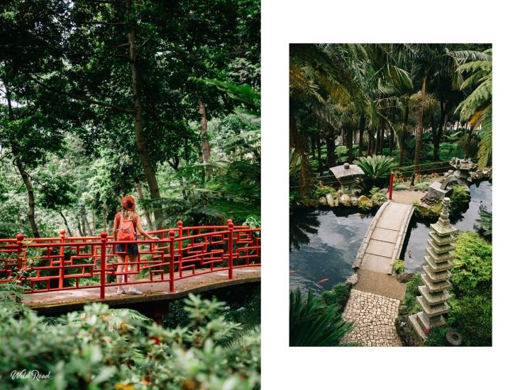 wildroad_jardintropical